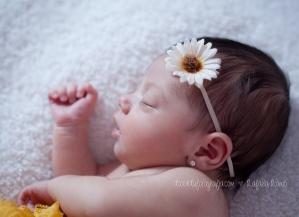newborn-lf-6800